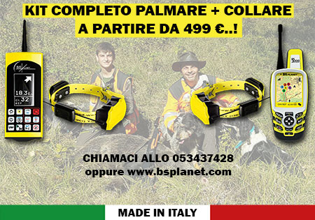 PROMO-499-euro-12